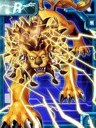 Liamon ex collectors card