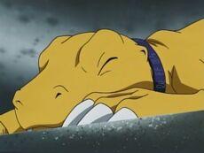 List of Digimon Adventure 02 episodes 10.jpg
