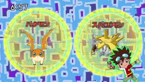 DigimonIntroductionCorner-Patamon 2.png
