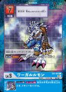 Dcg-EX1-017(平行卡)