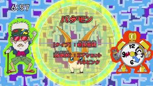 DigimonIntroductionCorner-Patamon 1.png