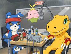 List of Digimon Data Squad episodes S1.jpg
