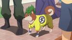 8-04 Super Saiyan Dog