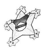Starmon star wheel