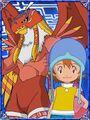 Sora & Garudamon Collectors Digimon Adventure Special Card