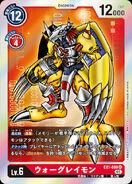 Dcg-EX1-009