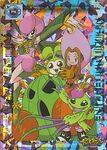 Digimon Adventure P6 (TCG)