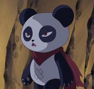 Pandadf