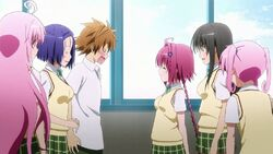 147522-to-love-ru-what