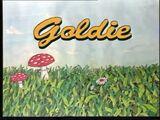 Goldie: Abenteuer im Zauberwald