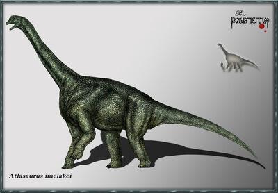 Atlasaurus.jpg