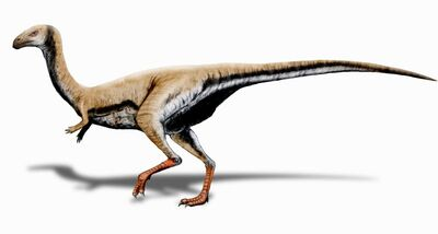 Limusaurus.jpg