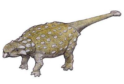 Shamosaurus.jpg