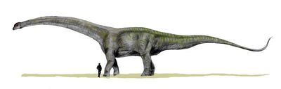 Futalognkosaurus.jpg