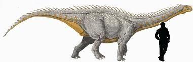 Barapasaurus.jpg