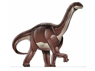 Blikanasaurus 1224711-L.jpg