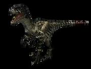 WWD Dromaeosaurus render.png