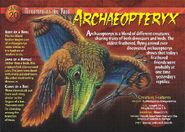 Archaeopteryx front