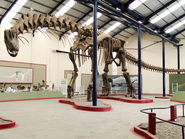 Argentinosaurus skeleton, PLoS ONE