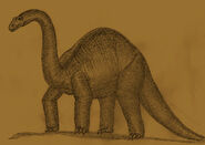 Brontosaurus summerleensis by Adiraiju.