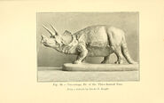 Animals of the past (Fig 16) (5985156230)