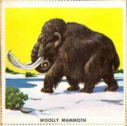 MAMMOTH-700x693