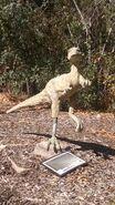George s eccles dinosaur park hypsilophodon by dinolover09 dcoo67z-fullview
