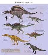 Worldwide spinosaurs by paleoguy-d7lvhzb