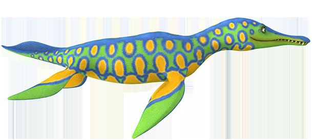 Polycotylus