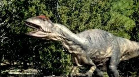 Big Al's mating call - Walking with Dinosaurs - BBC