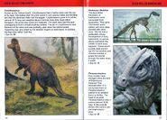 Duckbill I-Spy Dinosaurs