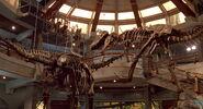 Jurassic-park-movie-screencaps com-13796