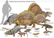 Classical Early Permian Terrestrial Faunal Assemblage from North America