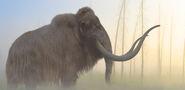 Woolly Mammoth by PhilipEdwin