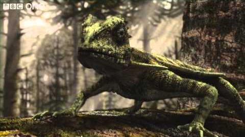 Flying Microraptor - Planet Dinosaur - Episode 2 - BBC One