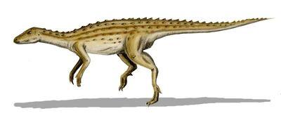 Scutellosaurus.jpg