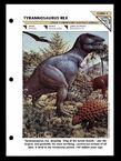 Wildlife fact file T-Rex front