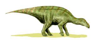 Iguanodon BW.jpg