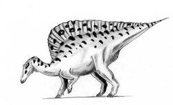 800px-Ouranosaurus.jpg