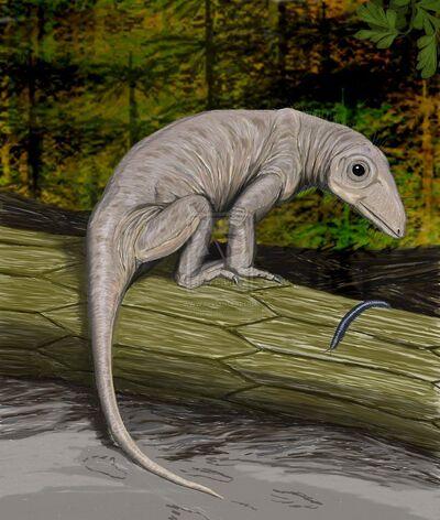 Nikkasaurus.jpg