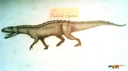 Nundasuchus Songeaensis