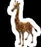 Giraffa jumae.png