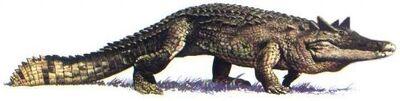 Ceratosuchus.jpg