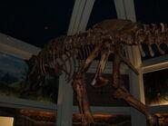 Replica Carnotaurus skeleton, DINOSAUR 2
