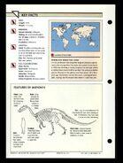 Wildlife fact file Baryonyx back