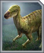 IguanodonProfile