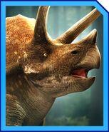 TriceratopsProfile