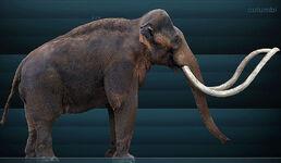 800px-Mammuthus columbi Sergiodlarosa.jpg