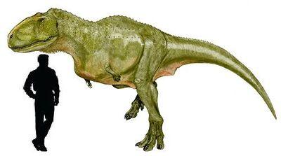 Aucasaurus.jpg