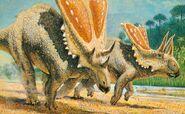 Chasmosaurus-postcard-700x431